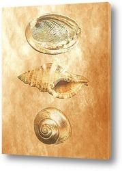 shell027