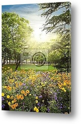Постер Parterre of flowers rounded by trees against sunset sunbeams