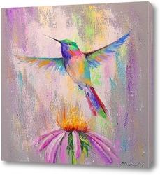 Постер Полет колибри