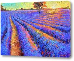 Картина Лавандовое поле