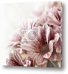 Постер Красивый букет в росе