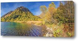 Постер Солнечный берег озера Кардывач мажорной осенью