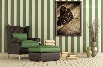 Модульная картина Тропическая бабочка