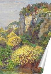 Постер Цветущая метла на Бриони