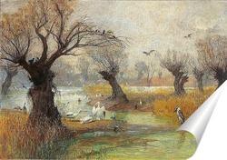 Постер Пеликаны на берегу реки