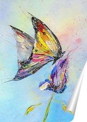 Постер Бабочка и цветок