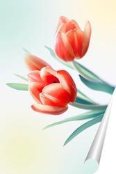 Постер Три тюльпана