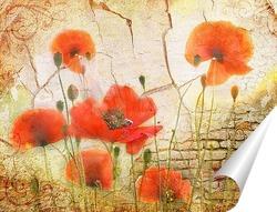 Постер Маки и рассвет