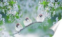Постер птицы в майском саду