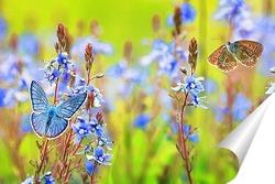 Постер на голубых цветах