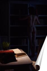 Постер Роман на ночь