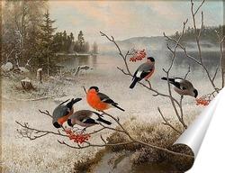 Постер Снегири и зимний пейзаж