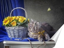 Постер Кошка и бабочка