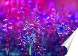 Постер бабочки на летнем лугу