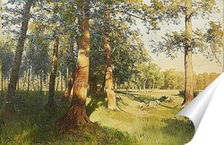 Постер Луг залитый солнцем, 1913