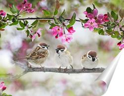 Постер птички на ветке
