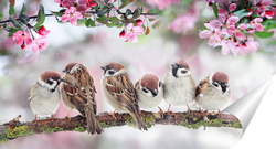 Постер птица в цветущем саду