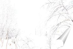 Постер Утро в зимнем лесу
