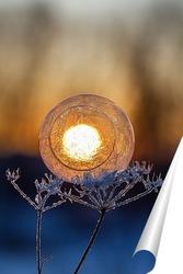 Постер Мыльные пузыри на фоне восходящего солнца