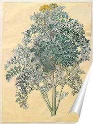 Постер Серые листья