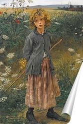 Постер Малый бергер
