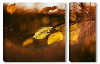 """Модульная картина """"золотая осень"""""""