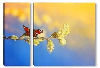 Модульная картина бабочка собирает нектар с вербы