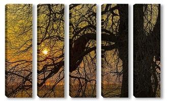 Модульная картина Силуэт дерева