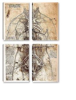 Модульная картина Leonardo da Vinci-39