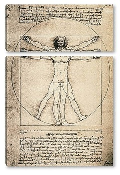 Модульная картина Leonardo da Vinci-24