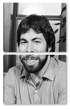 Модульная картина Steve Wozniak