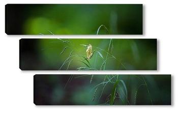 Модульная картина Травинки
