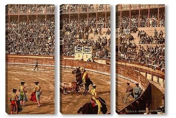 Модульная картина Бой быков, Барселона, Испания, 1895 год