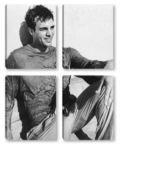 Модульная картина Mark Ruffalo-1
