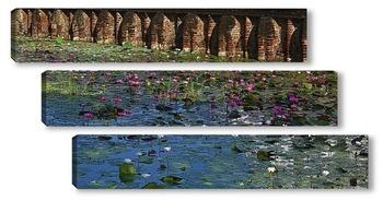 Модульная картина Лотосы - цветы Будды. Цейлон.
