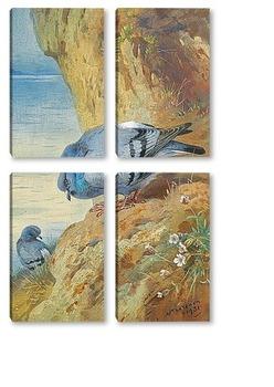 Модульная картина Голуби на скалах