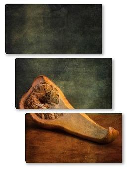 Модульная картина Анатомия тыквы