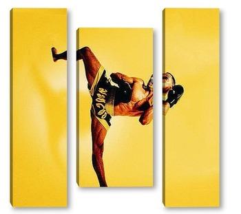 Модульная картина Karate001