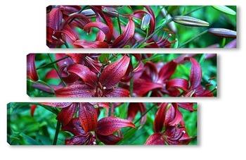 Модульная картина лилии