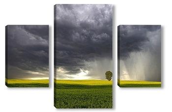 Модульная картина перед дождем