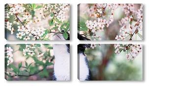 Модульная картина кошка в саду