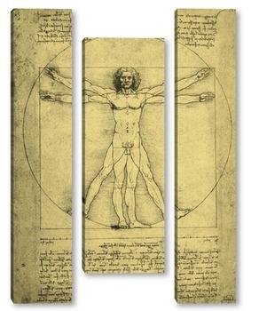Модульная картина Leonardo da Vinci-25