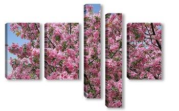 Модульная картина Яблоня в цвету - какое чудо!