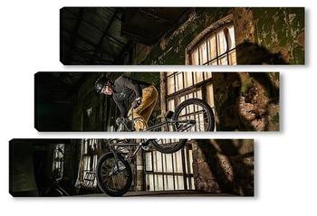 Модульная картина BMX Райдер