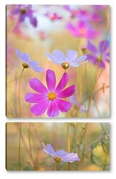 Модульная картина разноцветное лето