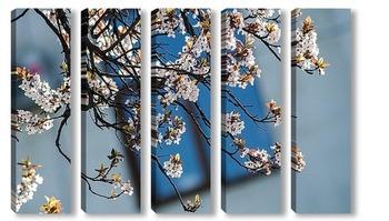 Модульная картина В моём городе сакура цветёт