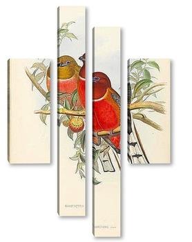 Модульная картина Птицы