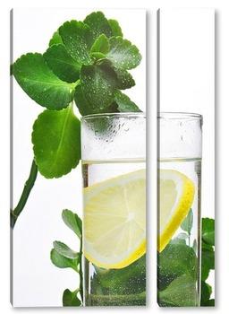 Модульная картина стакан здоровья