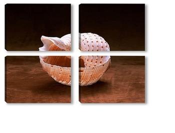 Модульная картина Shell008
