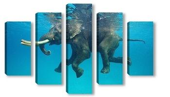 Модульная картина Плывущий слон